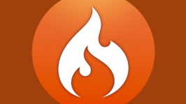 CodeIgniter Icon Logo