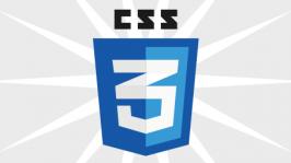 css3 Icon Logo