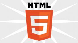 html5 Icon Logo